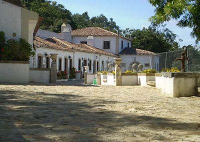 Quinta do Brejo 12