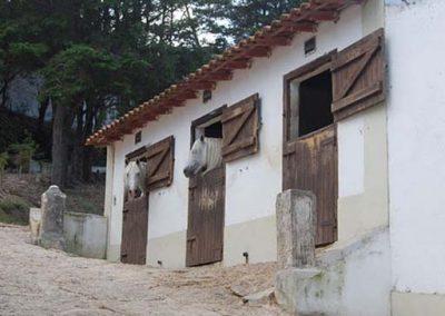 Quinta do Brejo 19