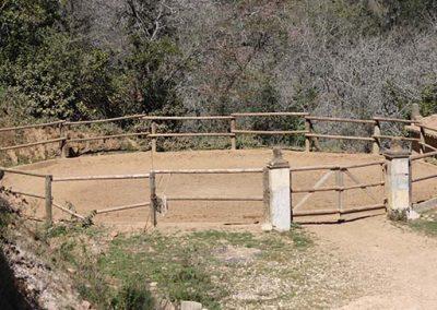 Quinta do Brejo 42